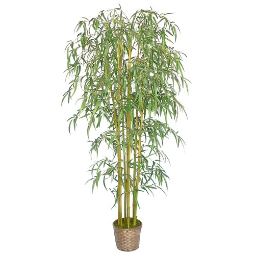 Silk Bamboo Tree in Basket