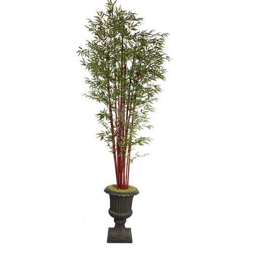 Tall Harvest Bamboo Tree in Urn