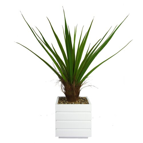 Tall Agave Floor Plant in Fiberstone Pot