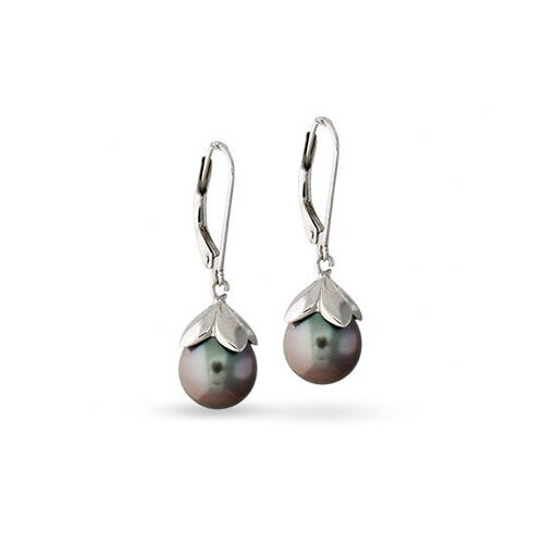 Round Tahitian Cultured Pearl Drop Earrings