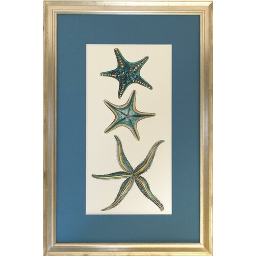 Seaside Living Aquamarine Starfish I Framed Graphic Art