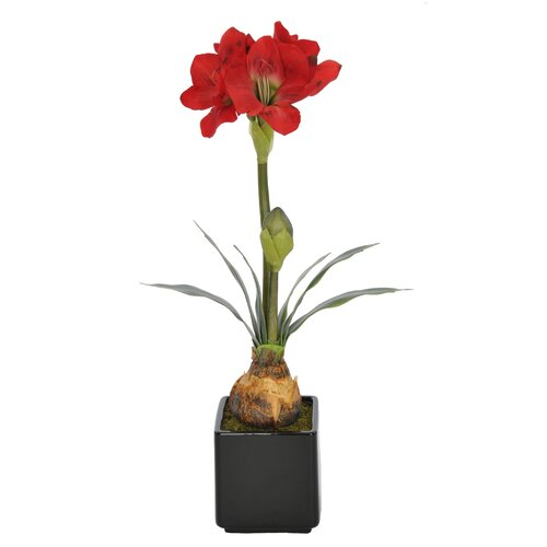 Artificial Amaryllis in Vase