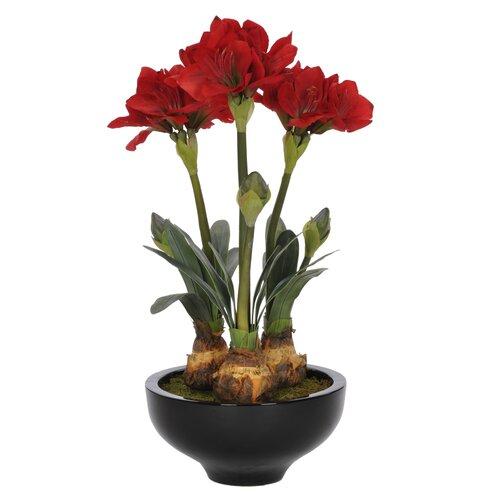 Artificial amaryllis in urn wayfair for Pot amaryllis