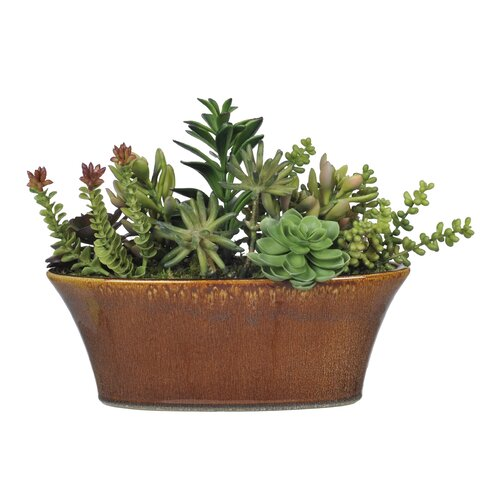 Artificial Succulent Garden Desk Top Plant in Planter