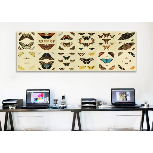 iCanvasArt 'Butterflies 12 Piece Plate Collection' by Cramer and Stoll Graphic Art on Canvas
