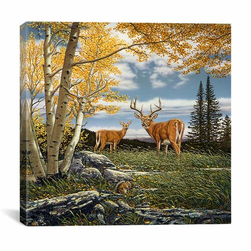 "iCanvasArt ""Woodland Meadows"" Canvas Wall Art by John Van Straalen"