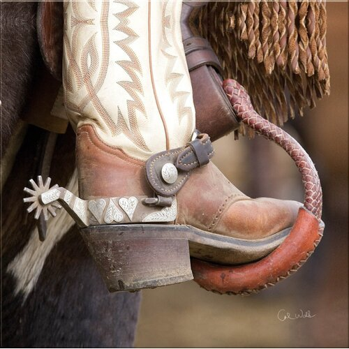 Cape Craftsmen Westward Bound Fancy Foot Indoor by Carol Walker Photographic Print on Canvas