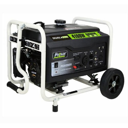Pulsar Products Dual-Fuel Peak 4100 Watt Liquid propane/Gasoline Generator