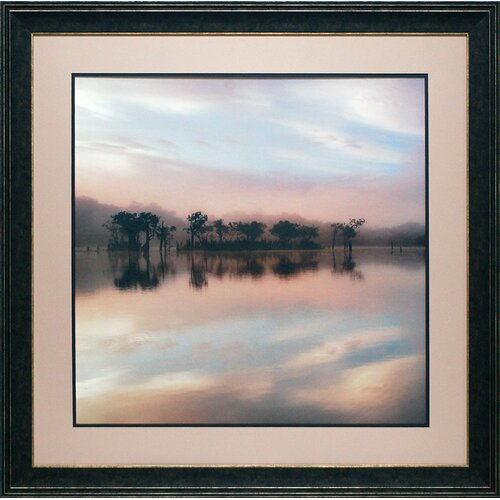 North American Art 'Dawn Mist on the Amazon' by Andy Mumford Framed Photographic Print