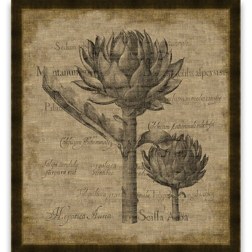 Artichoke Framed Graphic Art