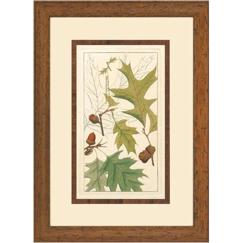 Epic Art Colton's Leaves I Framed Graphic Art