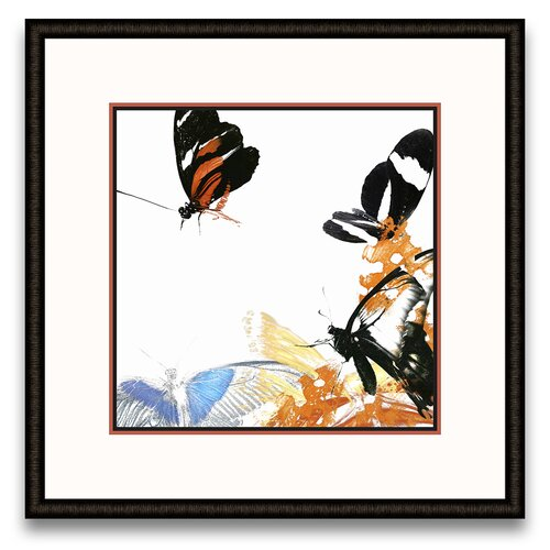 Flora Moderna Butterfly Inflorescence IV Framed Graphic Art