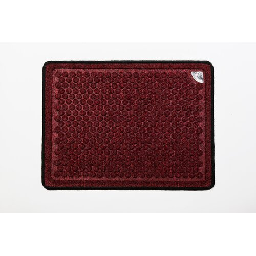 Antimicrobial Treated Doormat
