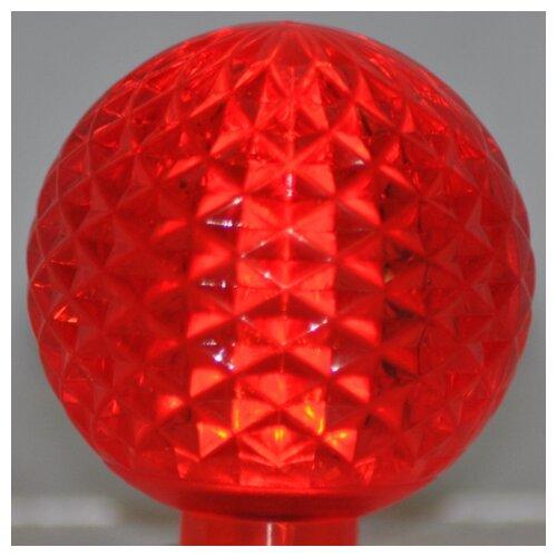 1.7W LED Light Bulb (Pack of 10)