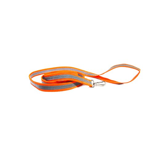 Seen and Secure Dual Sided Reflective Dog Leash