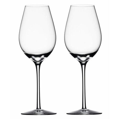 Difference White Wine Glass (Set of 2)