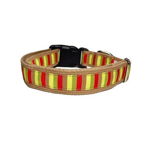Mod-Stripe Cotton Dog Collar