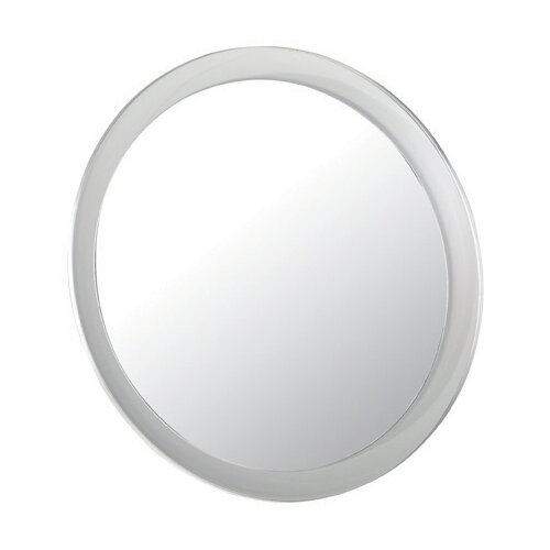 First Impressions Shower Mirror