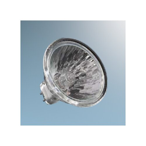Ushio 35W Halogen Light Bulb