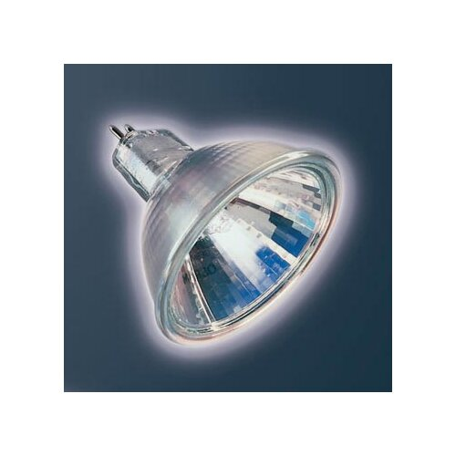 Bruck Lighting Ushio 50W Halogen Light Bulb