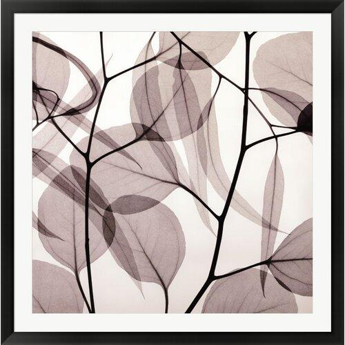 Eucalyptus Leaves [Positive] by Steven N. Meyers Photographic Print