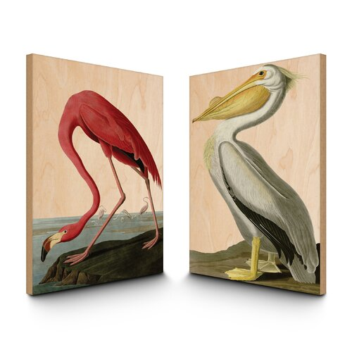 Natural Vintage Birds of America 2 Piece Painting Print Plaque Set
