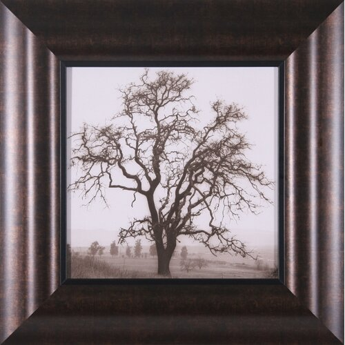 Country Oak Tree Framed Photographic Print