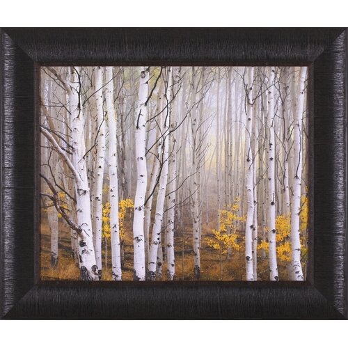 Aspen in Fog by Charles Cramer Framed Photographic Print