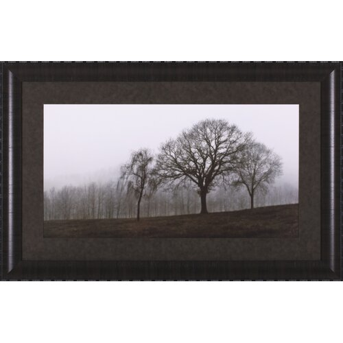 Autumn Fog by Ily Szilagyi Framed Photographic Print