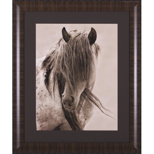 Art Effects Freedom by Lisa Dearing Framed Photographic Print