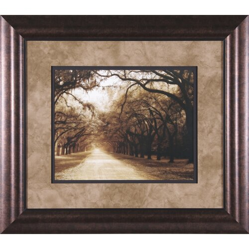 Art Effects Savannah Oaks I by Alan Hausenflock Framed Photographic Print