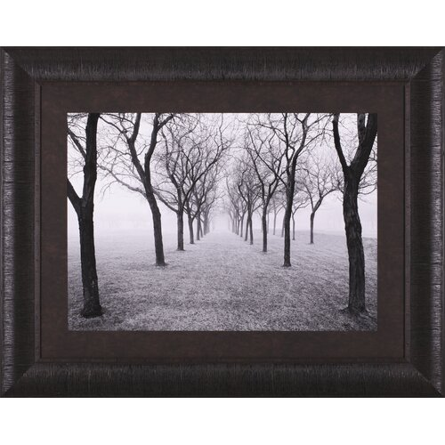 Art Effects Tunnel of Trees by Monte Nagler Framed Photographic Print