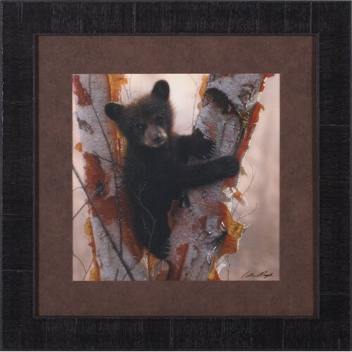Art Effects Curious Cub I by Collin Bogle Framed Painting Print