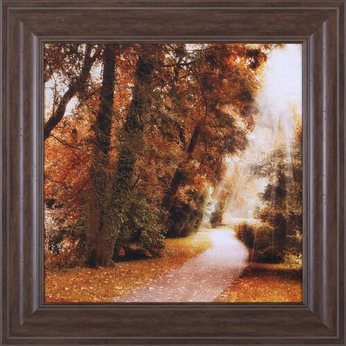 Forest Light by Jessica Jenney Framed Photographic Print