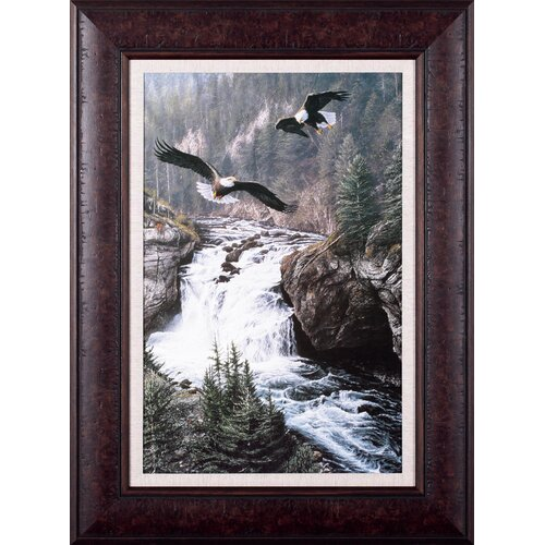 Land of The Free by Alan Hunt Framed Paingting Print