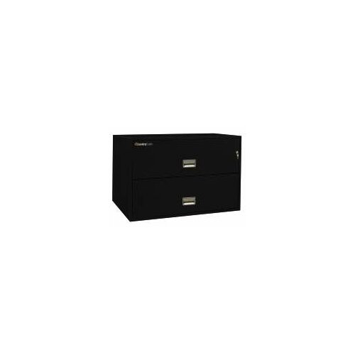"Sentry Safe 42.8"" W x 20.4"" D 2-Drawer Fireproof Key Lock Letter File Safe"