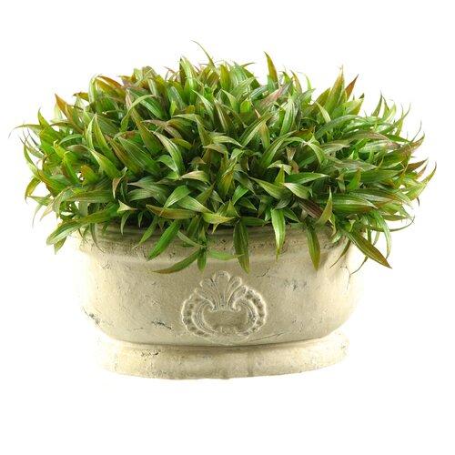D & W Silks Wild Grass in Oblong Ceramic Planter