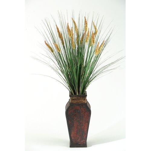 D & W Silks Tall Onion Dogstail Grass in  Wooden Decorative Vase