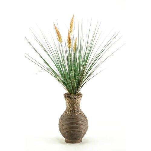D & W Silks Onion Dogstail Grass in Round Decorative Vase
