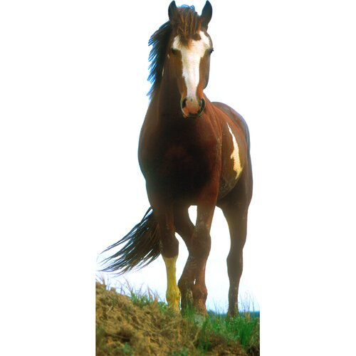 Advanced Graphics Cardboard Animals Mustang Horse Standup