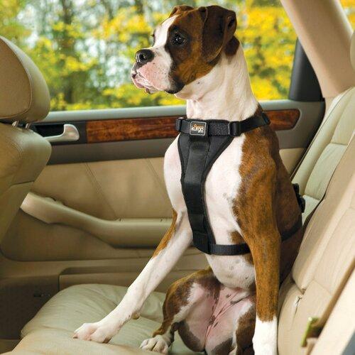 Tru-Fit Smart Dog Harness