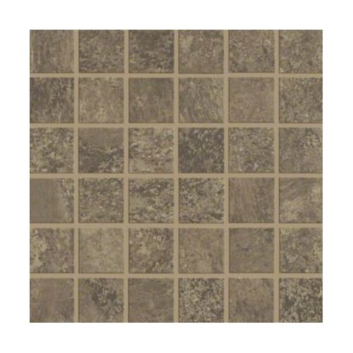 Shaw Floors Augustino Mosaic Tile in Bruno