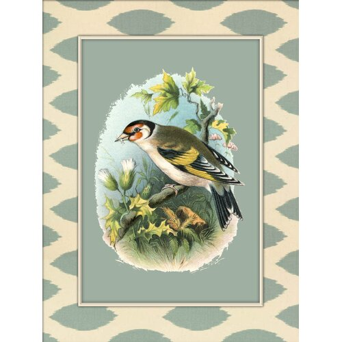 Vintage Bird Graphic Art on Canvas