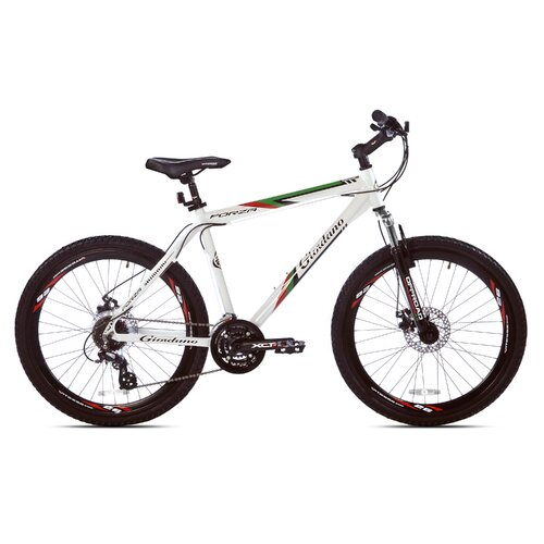 Men's Giordano Forza Mountain Bike