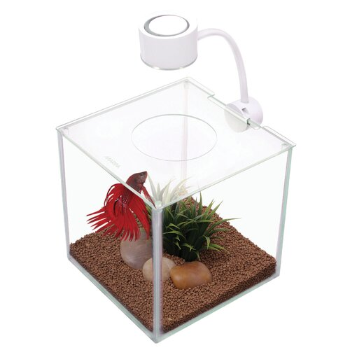 Hagen marina 0 9 gallon cubus betta aquarium kit reviews for Betta fish tank kit