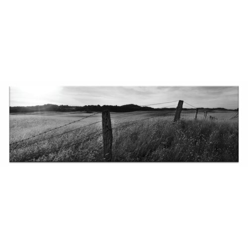 Golden Grass by Andrew Brown Photographic Print on Canvas in Black and White