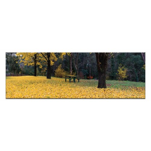 Bright Blanket by Andrew Brown Photographic Print on Canvas