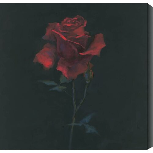 Floral Suite IV by Rose Hohenberger Painting Print Canvas