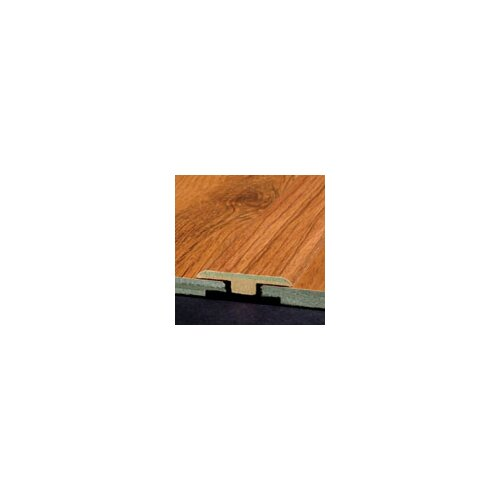 Armstrong Laminate T-Molding with Track