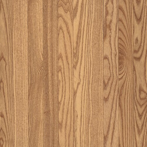 "Bruce Flooring Dundee 3.25"" Solid Red Oak Flooring in Natural"